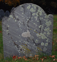 Whitmore, Samuel (1 May 1658-abt 22 May 1714) [Headstone photo]